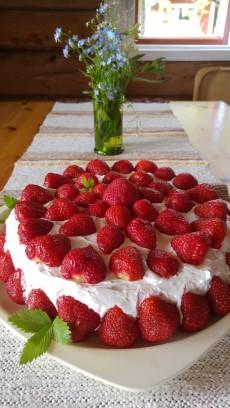 kotka saari7 kakku