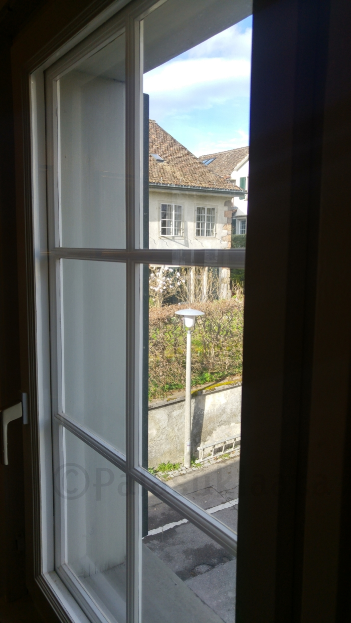boscon ikkuna