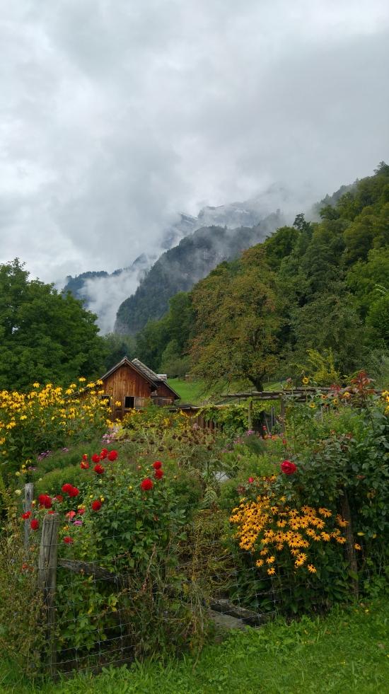 riviera 5 puutarha vuorella