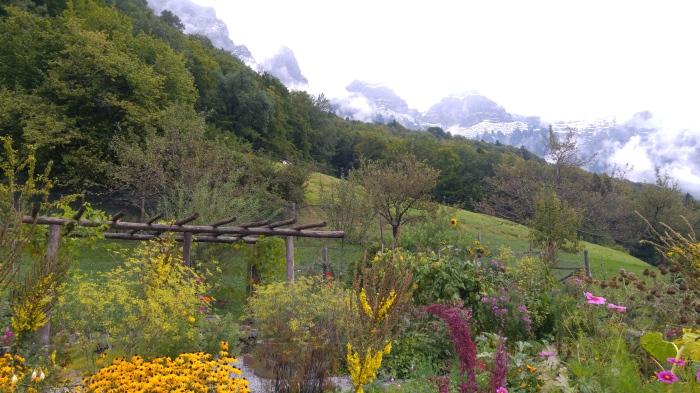riviera 7 puutarha vuorella