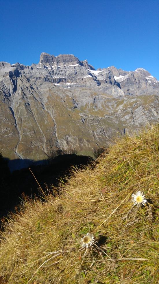 glarus 9 hieno vuori