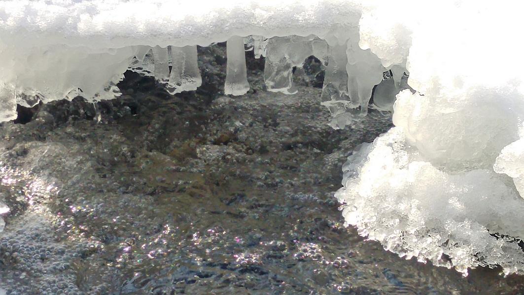 talvisveitsi 9 jää p