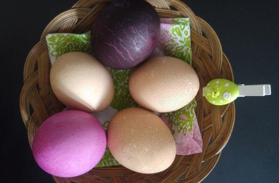 paasiainen munakori p