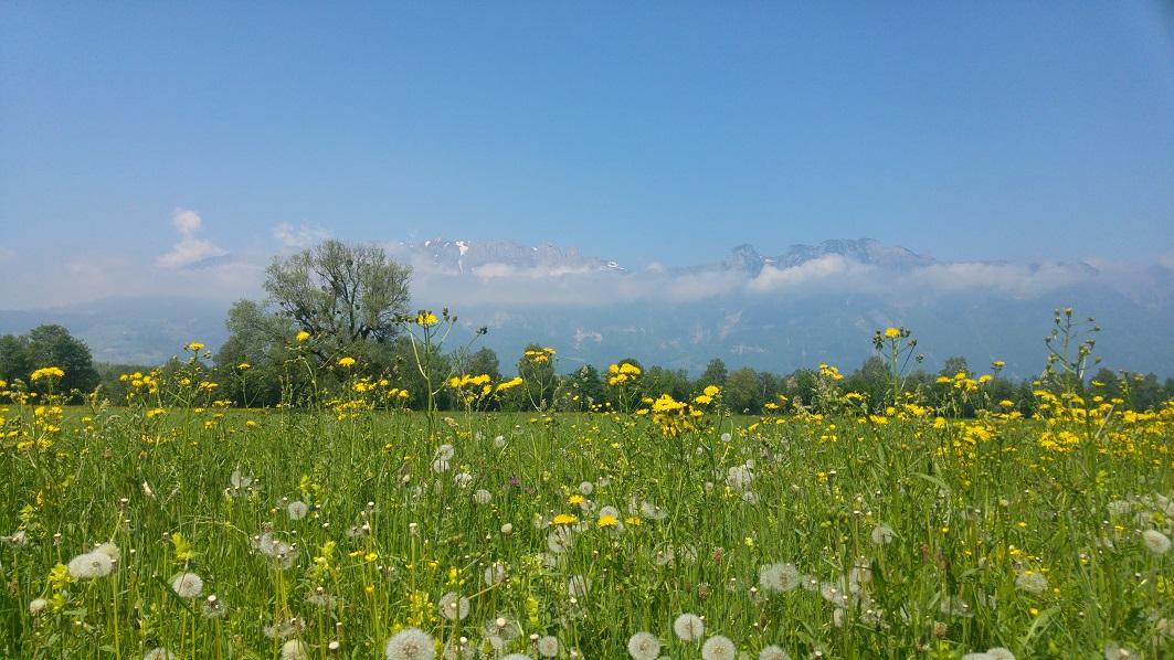 liechtenstein kukkaketo ja vuoret