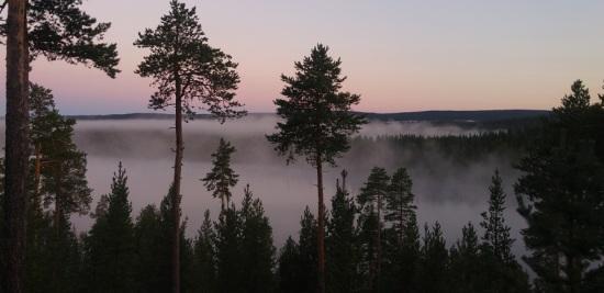 lappi luonto 4 yön usvaa