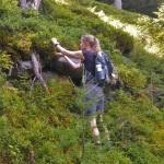 Marjahimo pistää kiipeämään vuorenmättäille